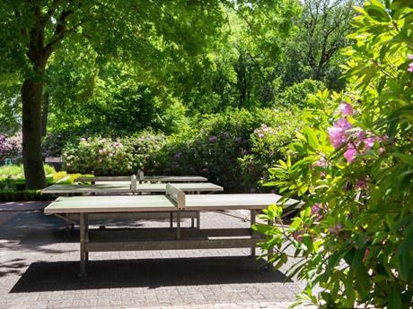 Tafeltennistafels Op Vakantiepark Latour
