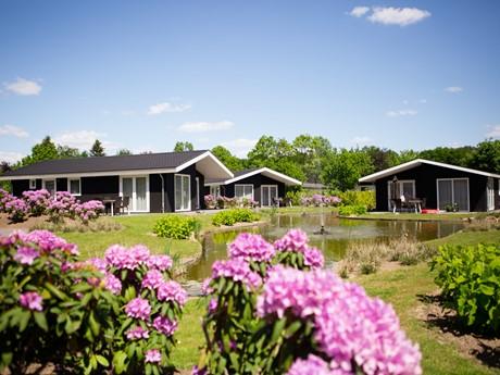 Waterbungalows Vakantiepark Molenvelden (2)