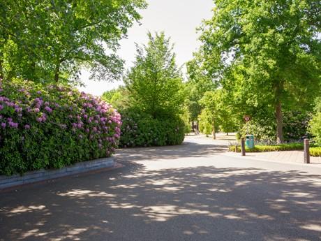 Lanen Op Vakantiepark Latour