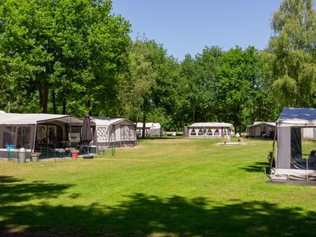 Kampeerveld Op Vakantiepark Latour